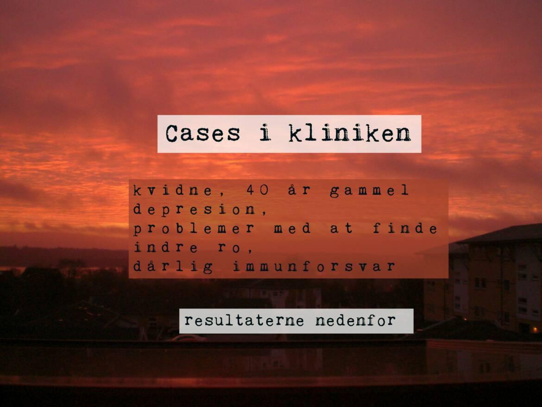 cases_dk_1-1.jpg
