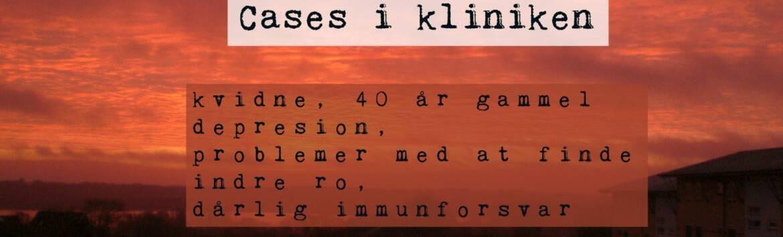 cases_dk_1-1580x480-1.jpg
