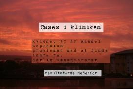 cases_dk_1-272x182-1.jpg