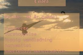 cases_dk_2-272x182-1.jpg