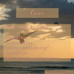 cases_dk_2-300x300-1.jpg