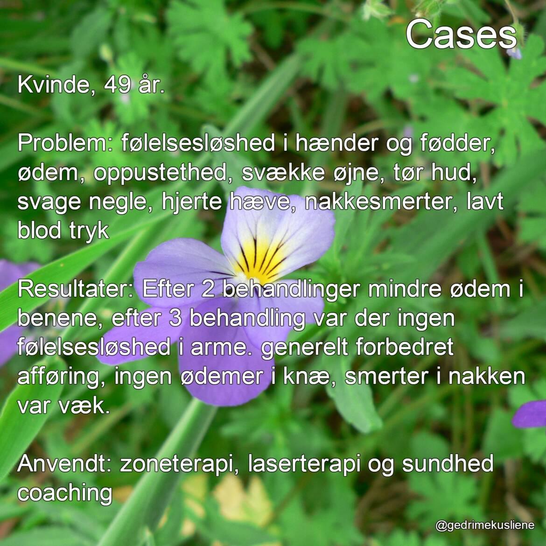cases_dk_3-1.jpg