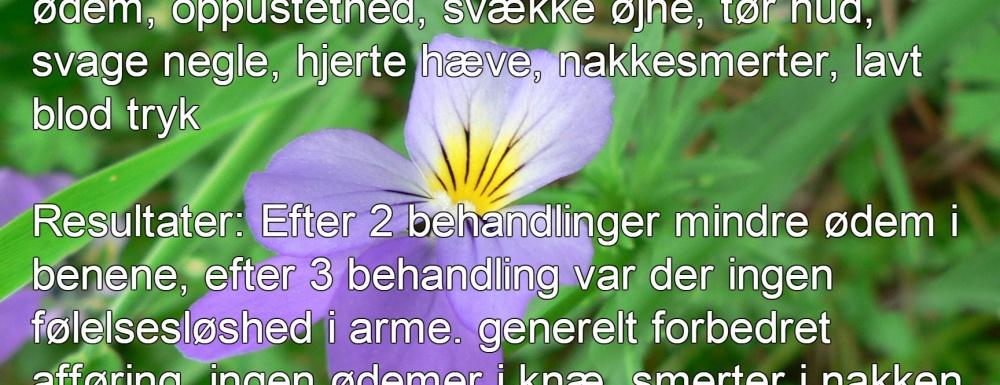cases_dk_3-1000x385-1.jpg