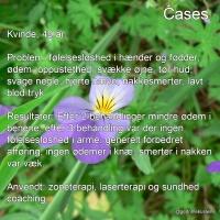 cases_dk_3-200x200-1.jpg