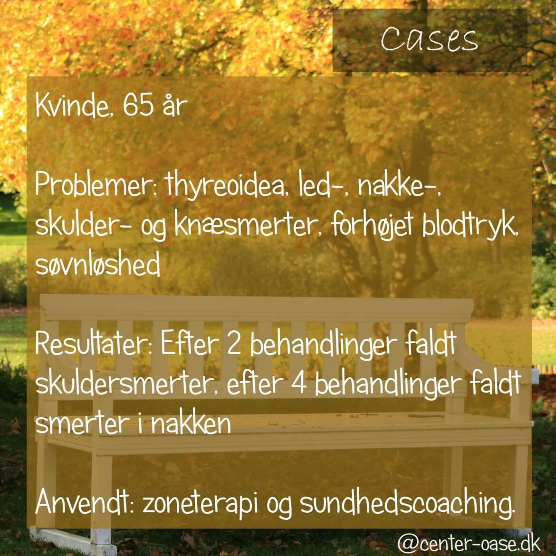 cases_dk_6-1.jpg