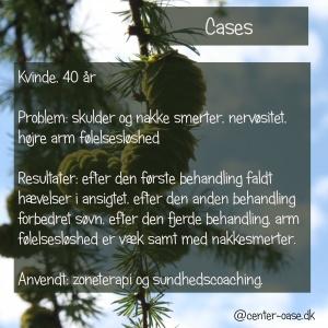 cases_dk_7-300x300-1.jpg